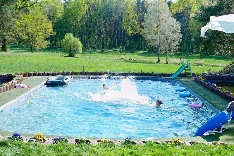 unser Pool (Schwimmteich)