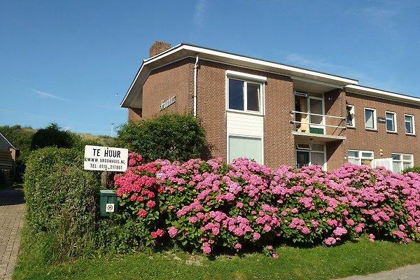 't Vroonhuis in Zoutelande - Bild 1