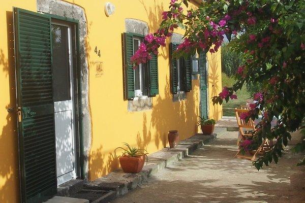 Casa Bouganvillea in Ginetes - immagine 1