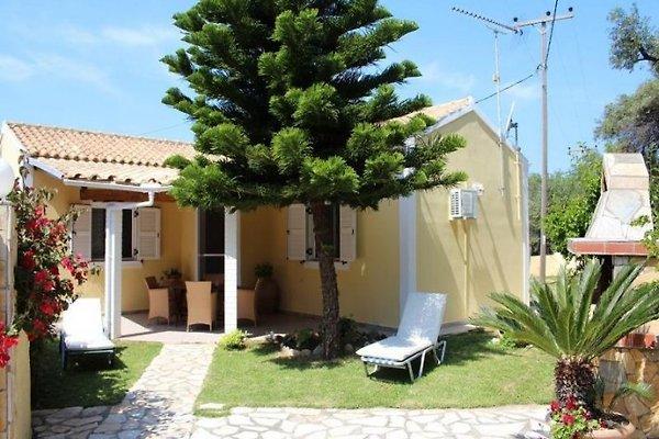 JASMIN in Agios Matthäos - Bild 1