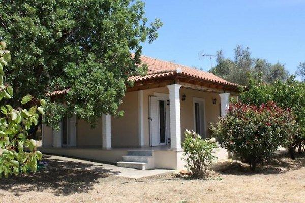 Chrissa à Agios Matthäos - Image 1