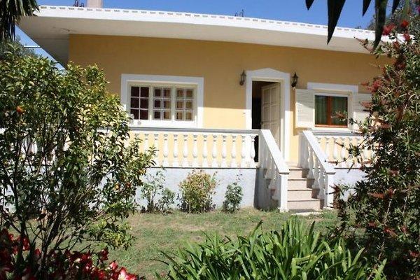 NIKIFOROS à Agios Matthäos - Image 1