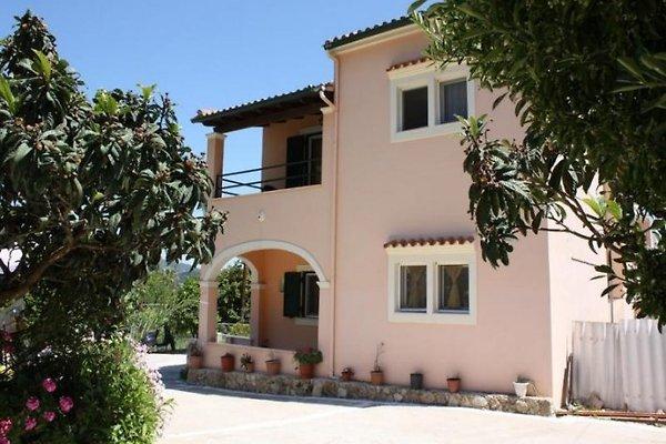 DIMITRA à Agios Matthäos - Image 1