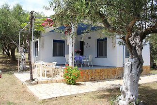 Holiday home relaxing holiday Peroulia