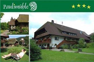 FeWo Paulimühle ****