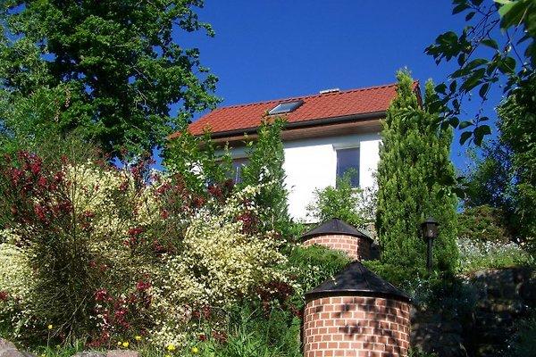 Ferienhaus am Waldesrand  in Krakow am See - immagine 1