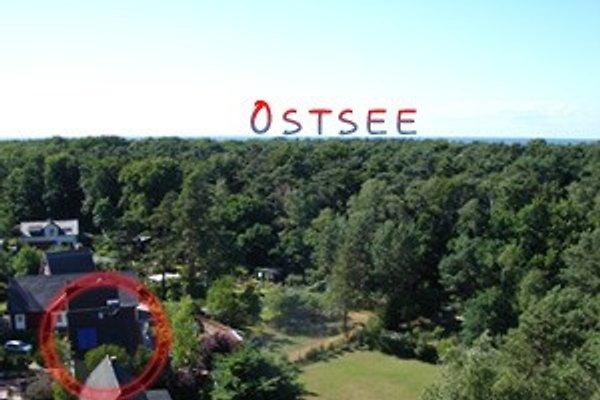 Blick vom Wasserturm auf Haus und Grundstück