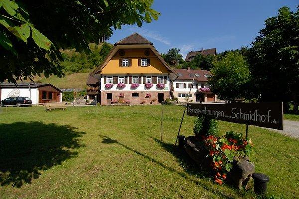 Schmidhof en Bad Rippoldsau-Schapbach - imágen 1