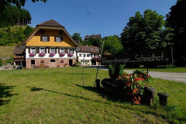 Schmidhof in Bad Rippoldsau-Schapbach - Bild 1