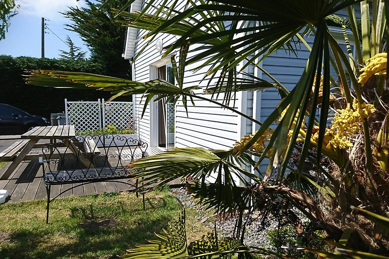 Terrasse fast unter Palmen