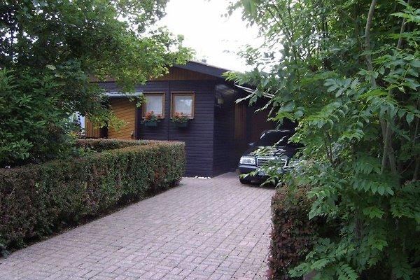 casa vacanze in Zoutelande - immagine 1