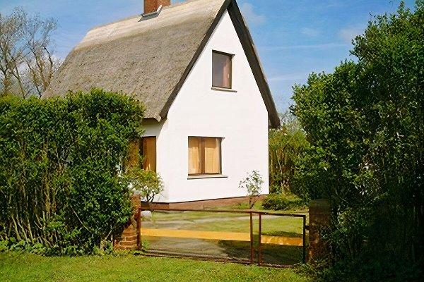 Haus Inselblick à Dranske - Image 1
