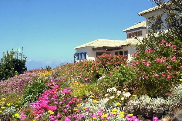 Quinta do Espigăo in Ponta do Pargo - Bild 1