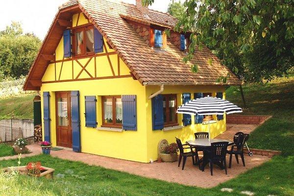 Gîte en Alsace in Mutzig - Bild 1