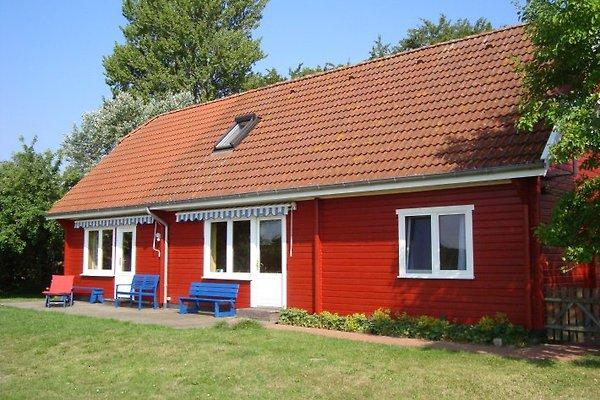 Ostsee Ferienhaus Wainopäh en Schönhagen - imágen 1