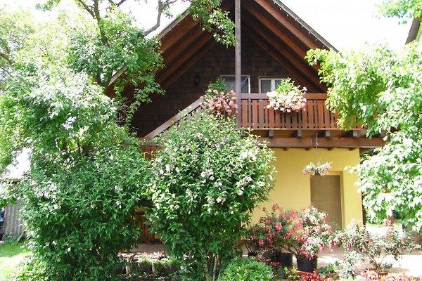 House Rose Garden in Reichenau - picture 1