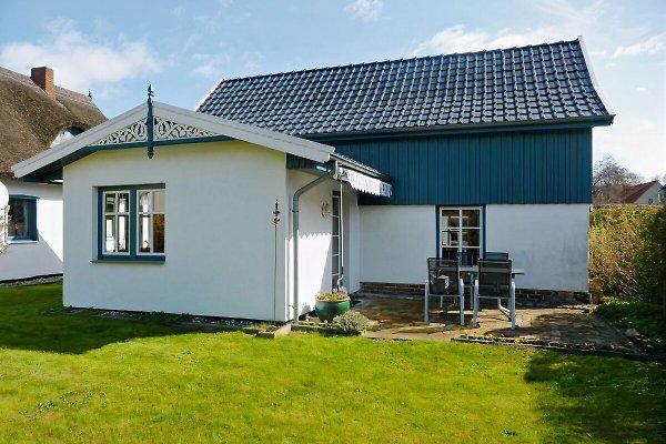 ferienhaus gabi ii in prerow maison de vacances prerow louer. Black Bedroom Furniture Sets. Home Design Ideas