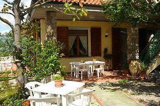 Holiday Rental L'Ulivo di Sempre Bianco