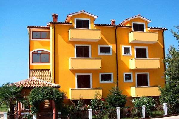 Appartement Anna et Branko à Novigrad - Image 1