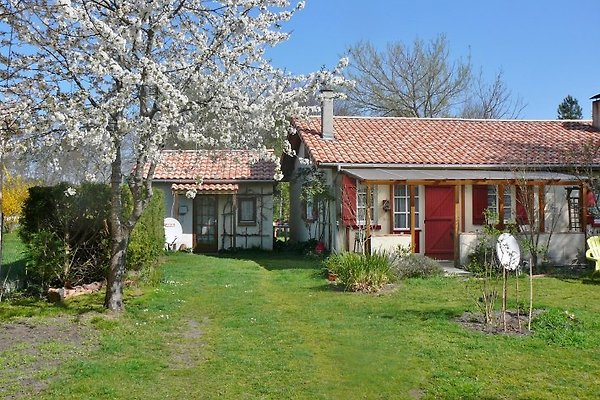 Bauernhaus mit Garten in Parentis en Born - immagine 1
