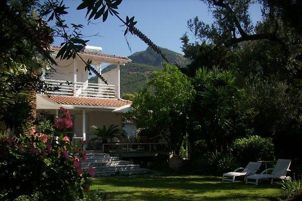 180m vom Meer: Gepflegtes Landhaus in mediteranem Garten