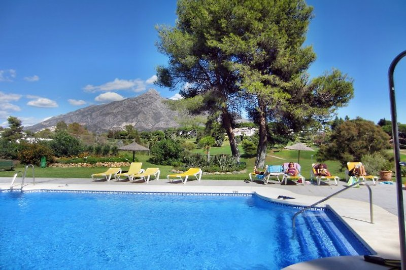 Der großzügige Swimmingpool mit ausreichend Sonnenliegen