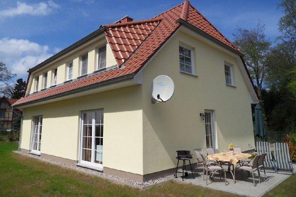 Ferienhaus Am Küstenwald à Kölpinsee - Image 1