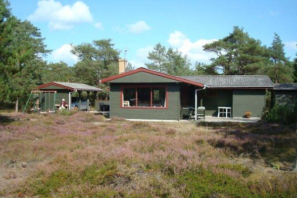 Ferienhaus mit INTERNET en Helberskov - imágen 1