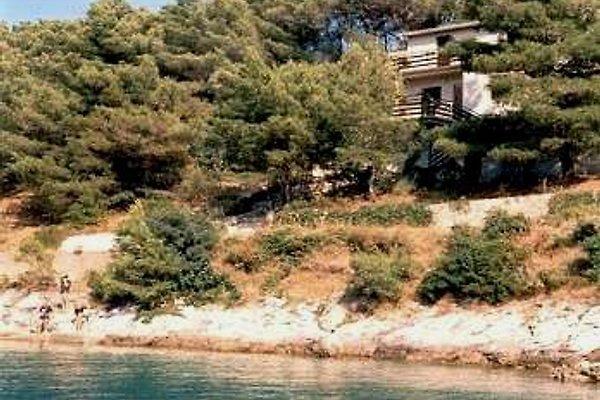 otok ferienhaus Dugi en Dugi Otok - imágen 1
