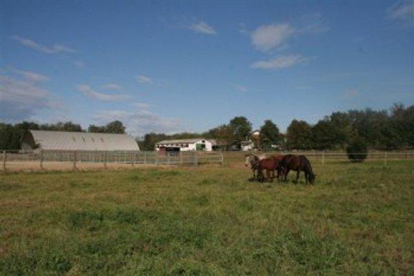 Agriturismo Fano's Farm in Suno - Bild 1
