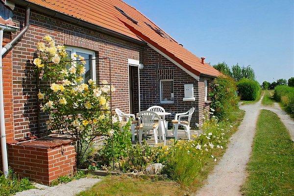 Ferienhaus Deichblick in Norddeich, Norden - immagine 1