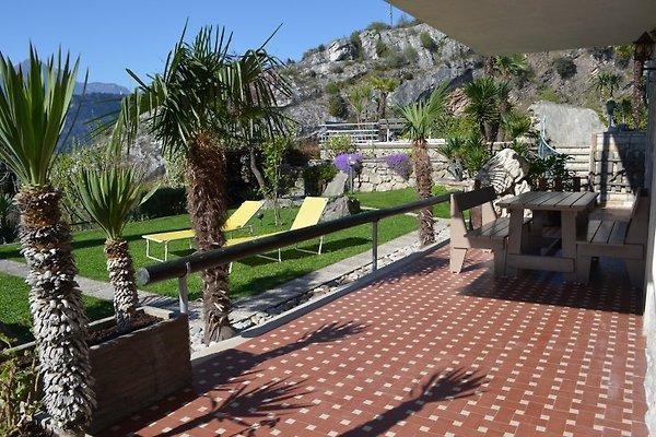 Schöne Wohnung in Torbole sul Garda - Bild 1