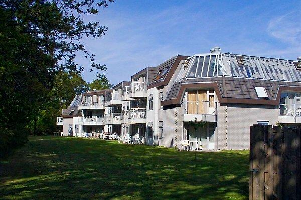 Texel de vacances  à De Koog - Image 1