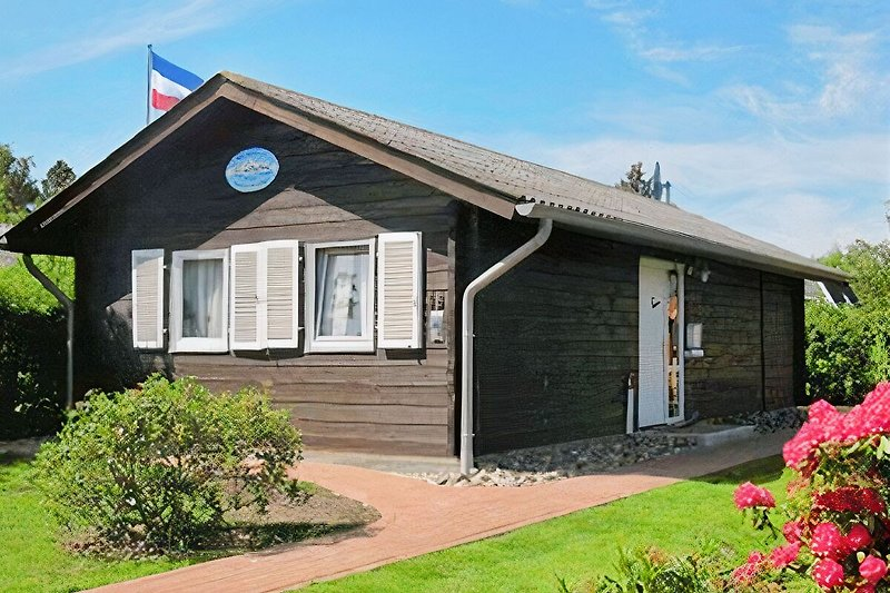 Das Ferienhaus Albatros von der Ostseite