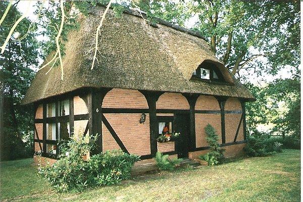 Uhriges Reetdachhaus Vogelnest in Raddestorf - immagine 1