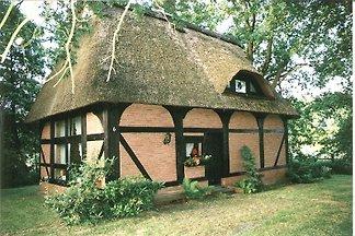 Uhriges Reetdachhaus Vogelnest