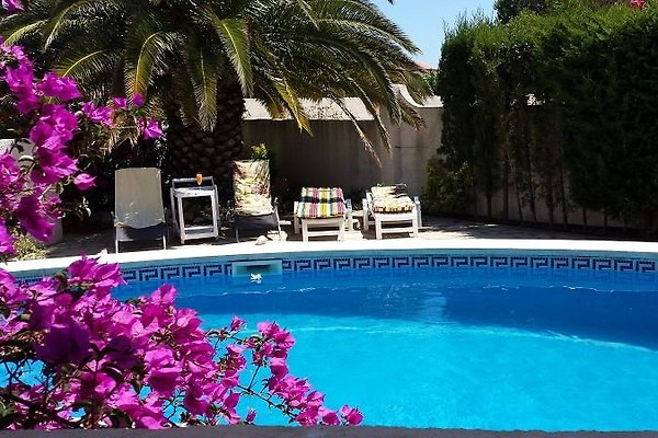 Exkl. Villa für 6 Pers. mit Pool in Miami Playa - Bild 1