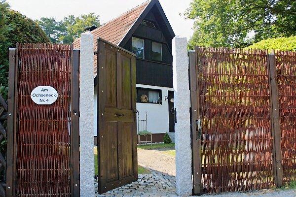 Spreewaldhaus Libelle à Burg - Image 1