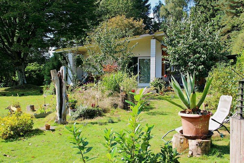 Garten ca 1800 qm groß