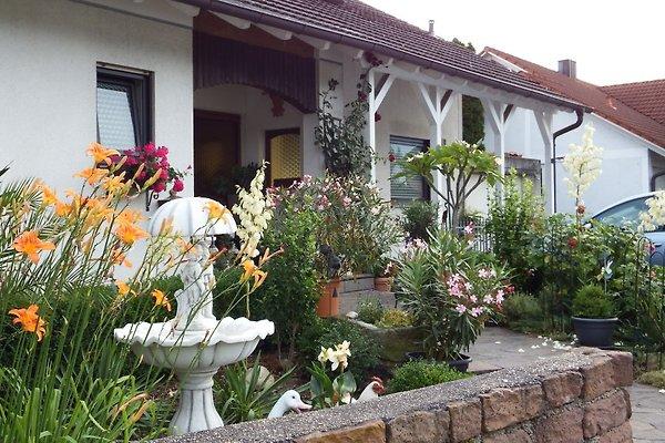 Gästehaus König à Neustadt an der Weinstraße - Image 1