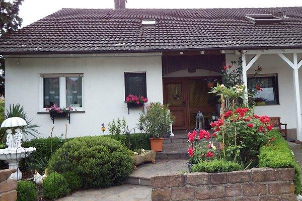 Gästehaus König in Neustadt an der Weinstraße - immagine 1