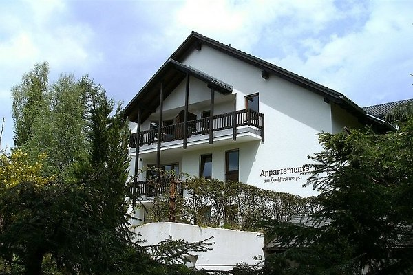 Ferienwohnung im Schwarzwald en Titisee-Neustadt -  1