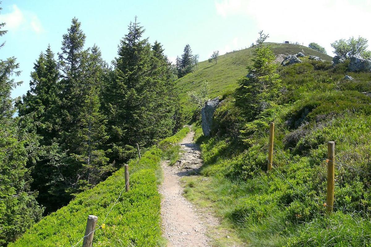 Ferienwohnung im schwarzwald appartamento in titisee for Ferienwohnung im schwarzwald