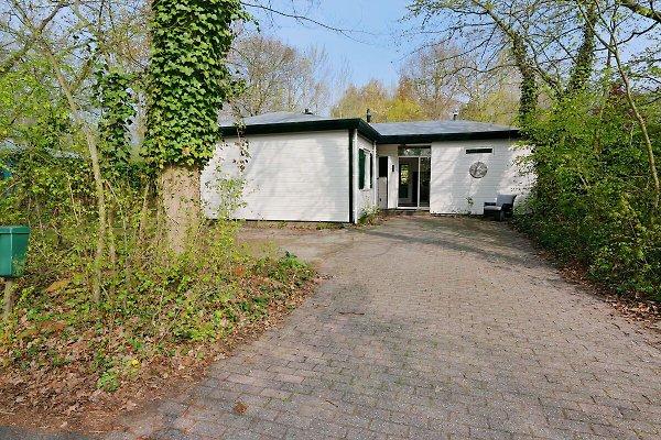 Populierenlaan 14 à Nieuw-Haamstede - Image 1