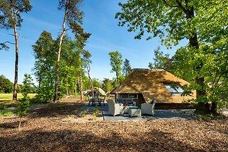 """Sprielderbosch 44 """"Green Balance"""""""