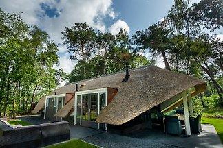 Sprielderbosch 22 Maison Forestière