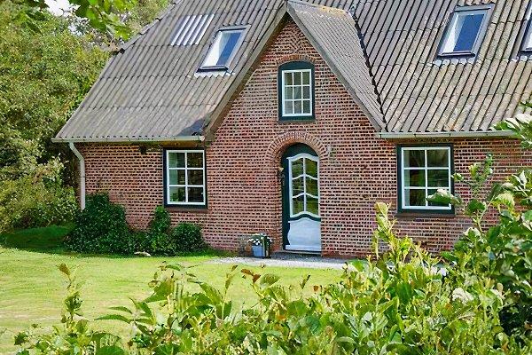 Ferienhof Röhe  à Tümlauer-Koog - Image 1