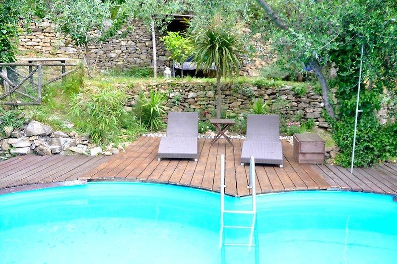 Pool 7.50 x 3