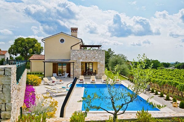 Beautiful garden and a large swimming pool with three depth levels
