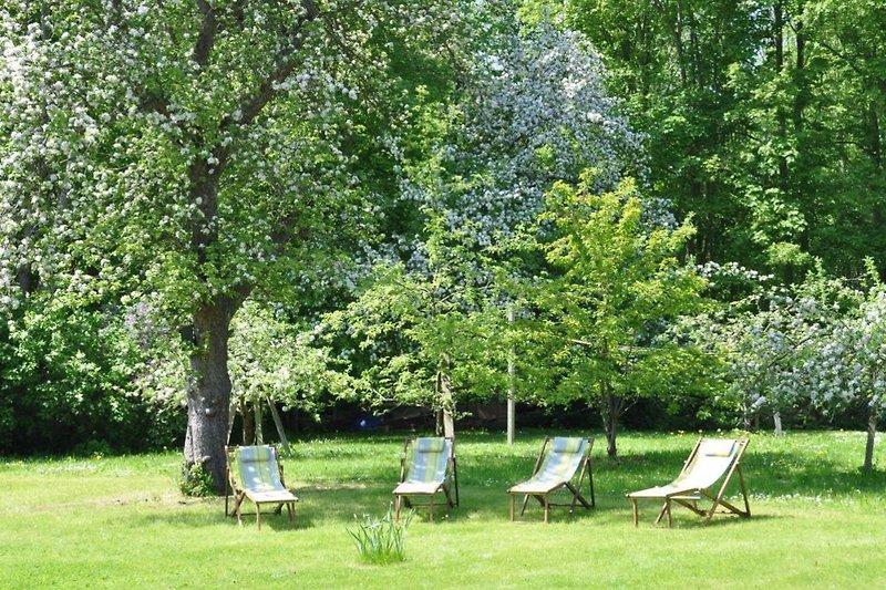 Im Garten hat man Ruhe